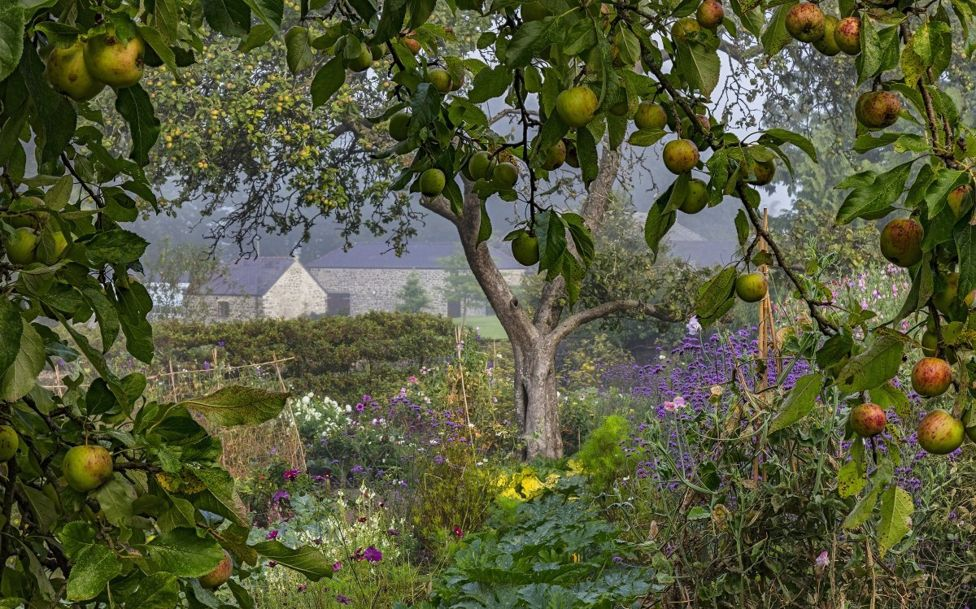International Garden Photographer of the Year-12.jpg