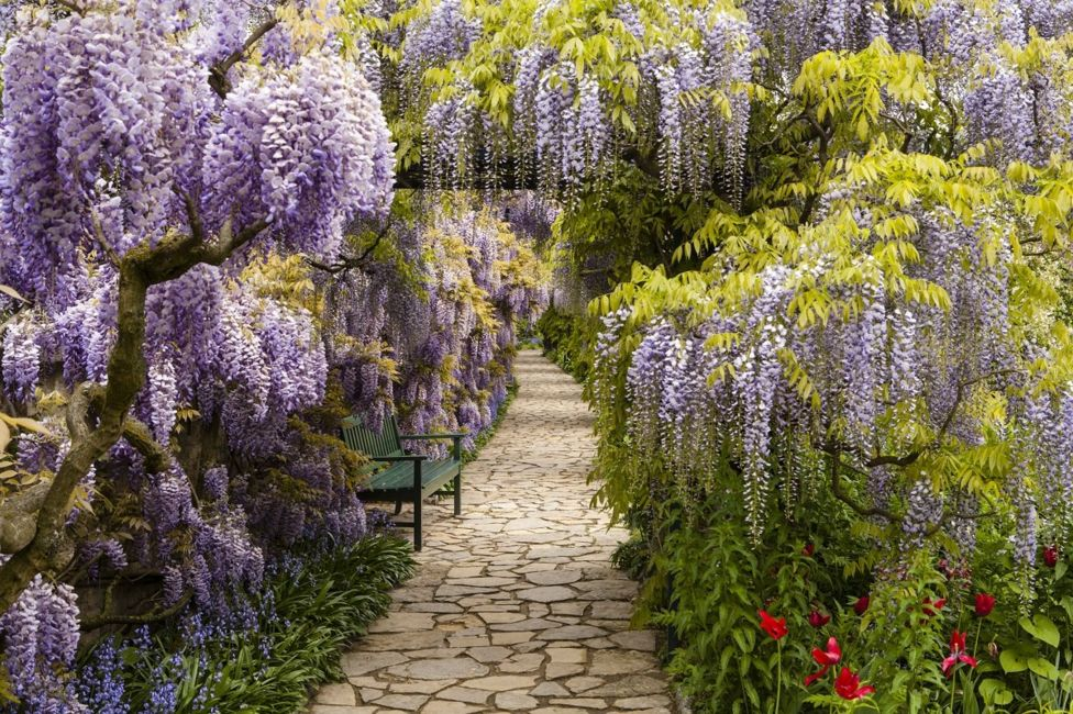 International Garden Photographer of the Year-18.jpg