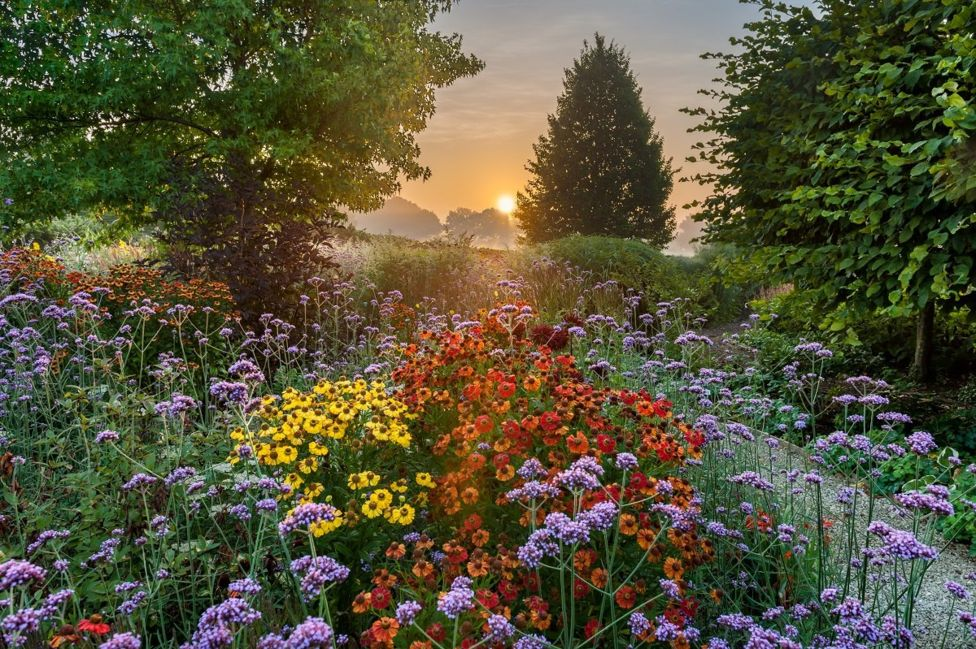 International Garden Photographer of the Year-10 10.jpg