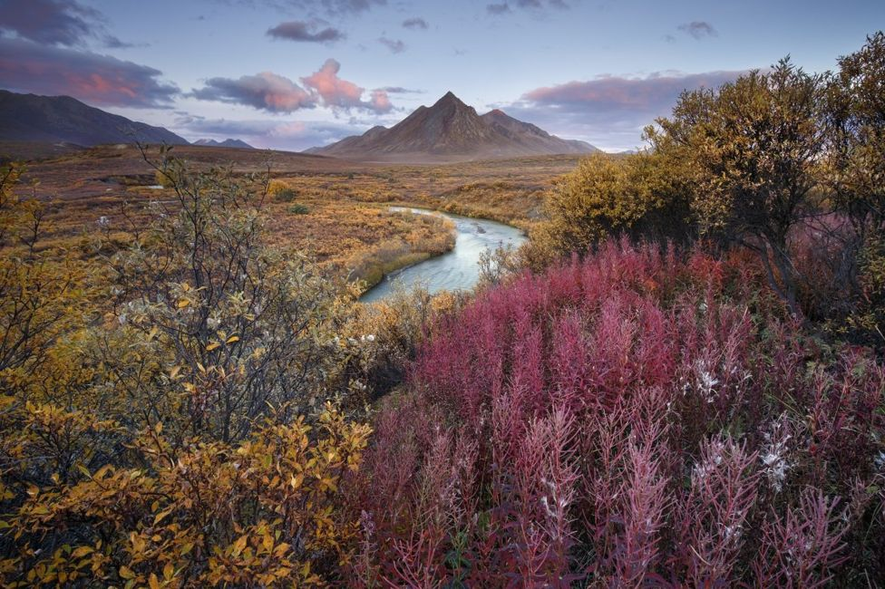 International Garden Photographer of the Year-16.jpg